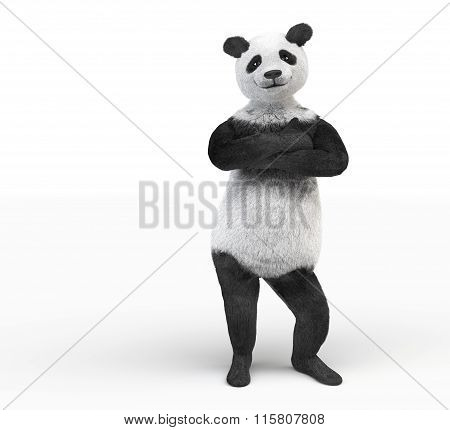 Panda Personage Folded Paws Across