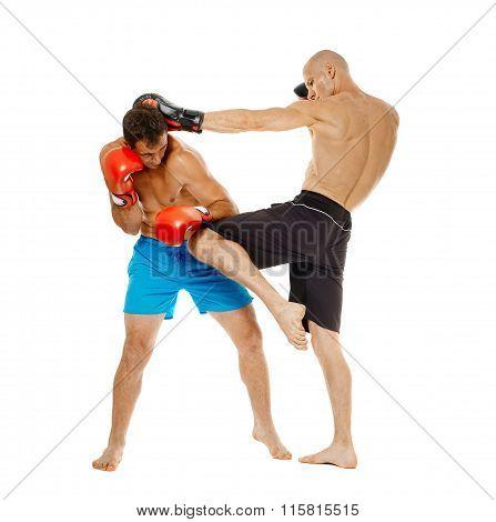 Kickbox Fighters Sparring