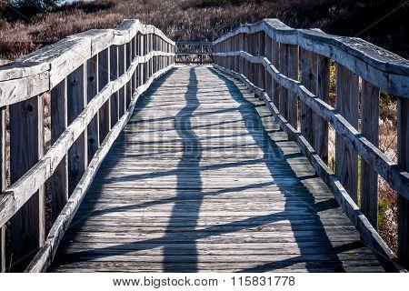 Long, Narrow Boardwalk in Sunlight