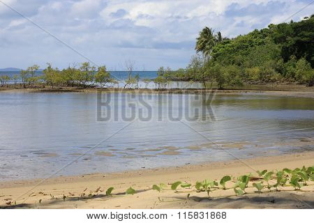 Port Douglas Waterfront 8506