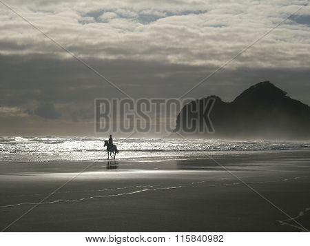 Single horse rider on an empty beach