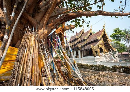 Wooden Props Support An Old Bodhi Tree In The Grounds Of Wat Jed Yod, Chiang Mai, Thailand