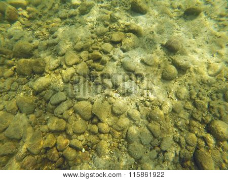 Background of Rocks Sand and Algae on the Bottom of a Lake poster