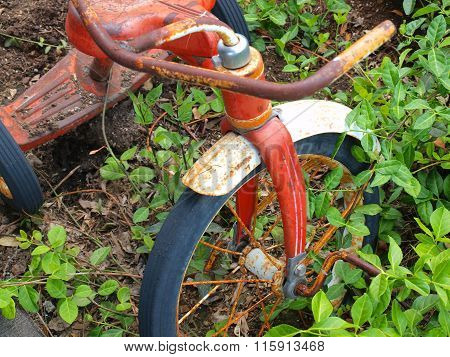 Vinatge Bicycle Used As A Planter In A Country Setting
