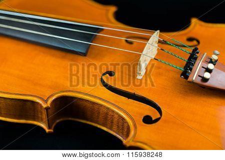 Violin F-Holes