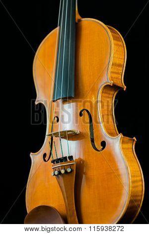 Violin Body
