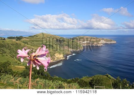 Viewpoint On Sao Miguel, Azores