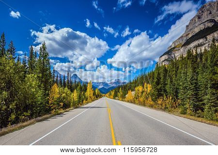 Excellent highway and surrounded by autumnal woods. Travel to the Bow River Canyon in September.  Canadian Rockies, Great Banff