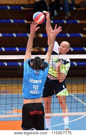 KAPOSVAR, HUNGARY - JANUARY 16: Zoltan David (green 8) in action at a Hungarian National Championship volleyball game Kaposvar (green) vs. Sumeg (blue), January 16, 2016 in Kaposvar, Hungary.