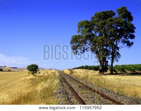 Rail Track To Nowhere