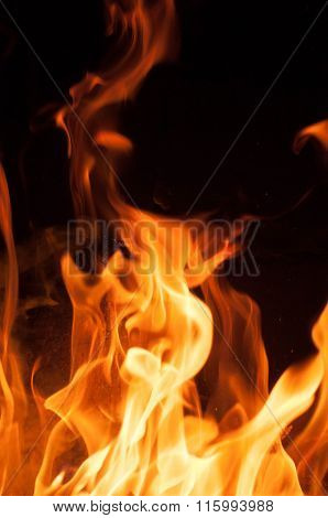 Fire flames on a black background. Blaze fire flame texture background. Close up of fire flames isol