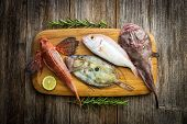 Fresh saltwater fish on old wooden background poster