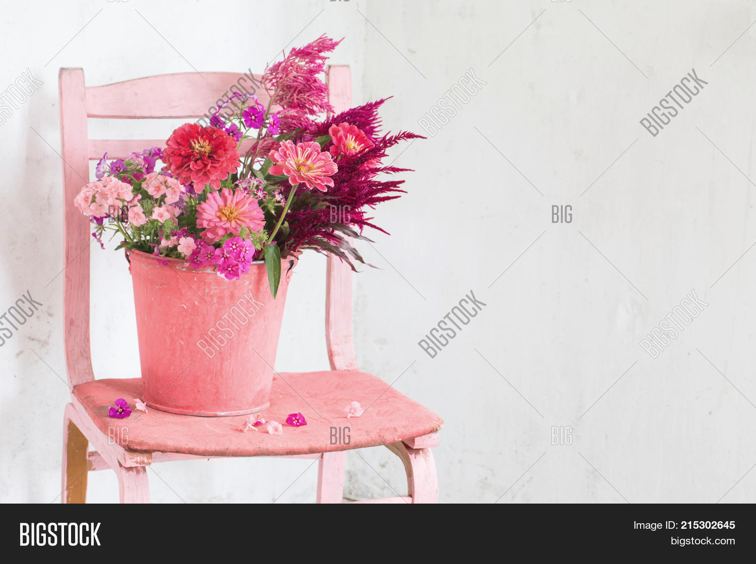 Pink Flowers Bucket On Image Photo Free Trial Bigstock