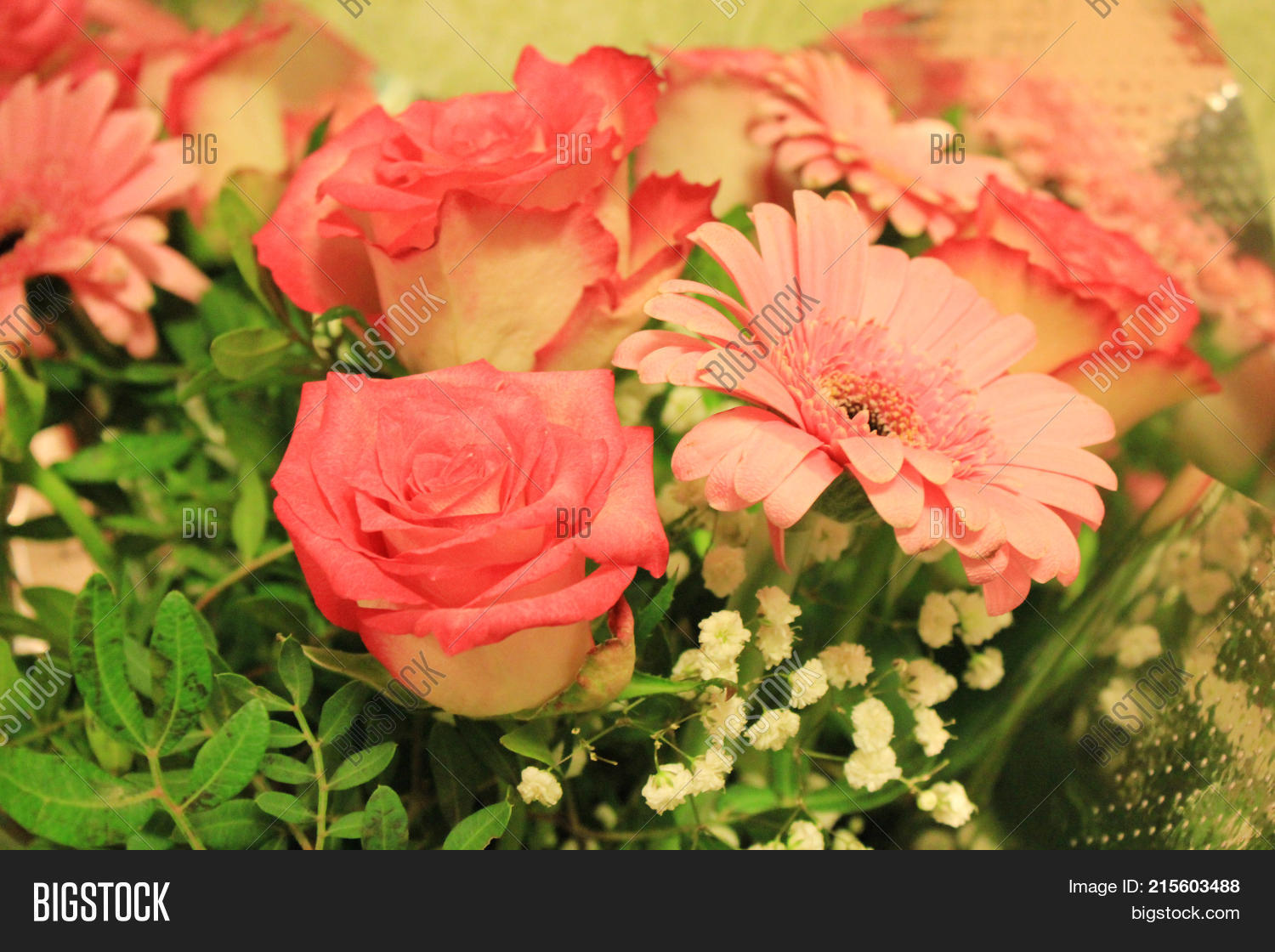 Roses gerbera daisy image photo free trial bigstock roses and gerbera daisy flower bouquet attractively arranged by red pink and white color izmirmasajfo