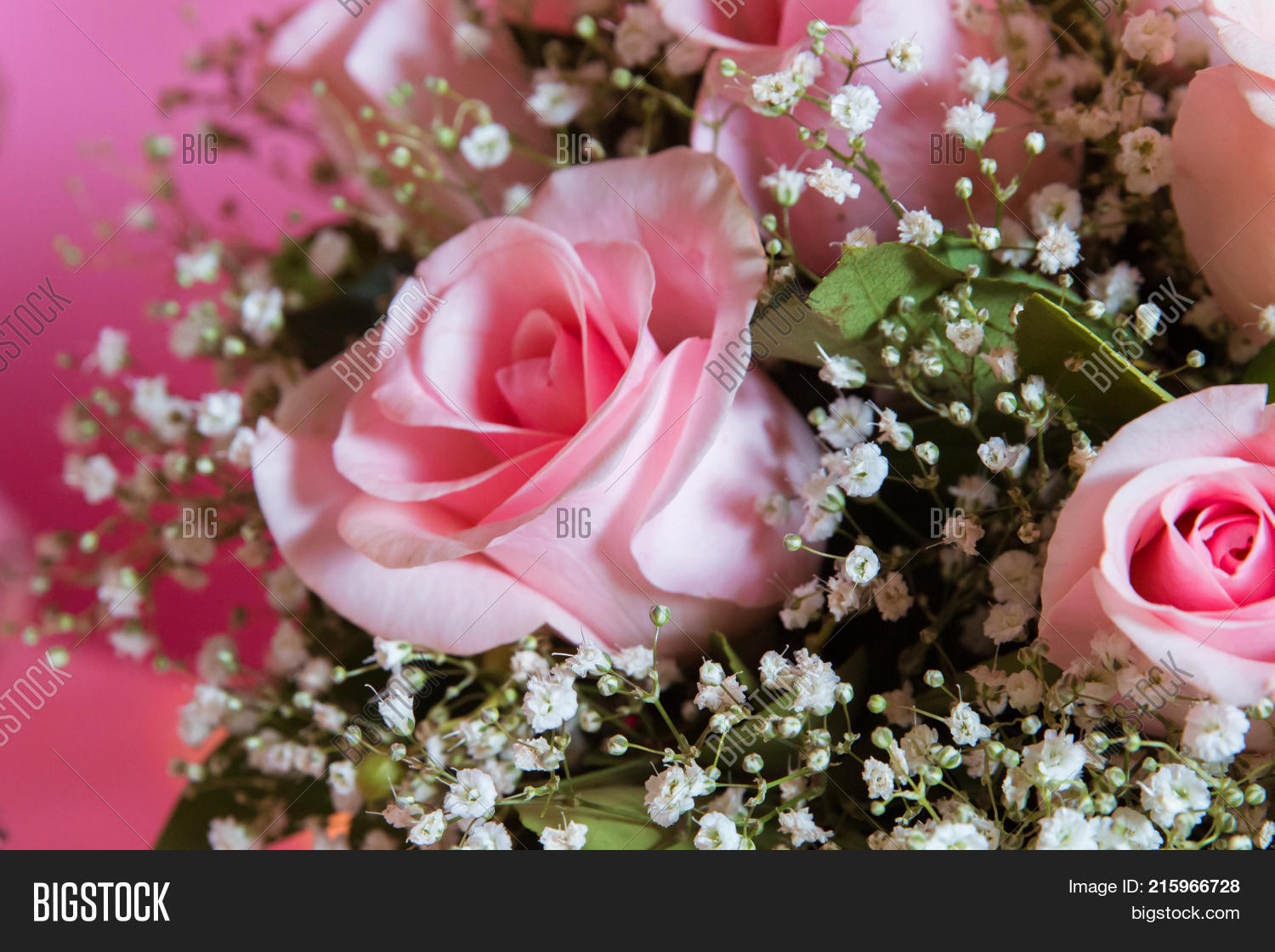 Candy Bar. Cage Image & Photo (Free Trial) | Bigstock