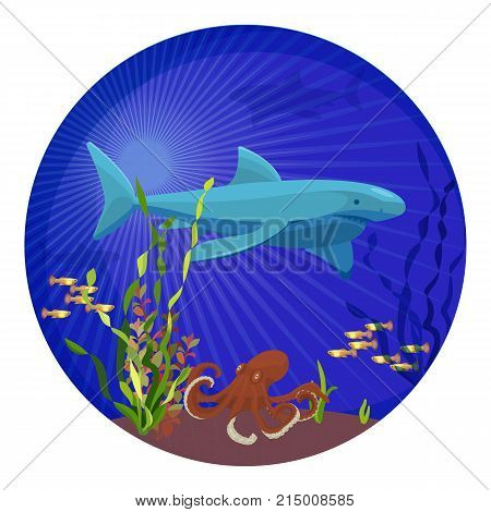 Deep sea creatures, big shark placed in centerpiece, small fish and octopus, plants and sand in underwater world on vector illustration