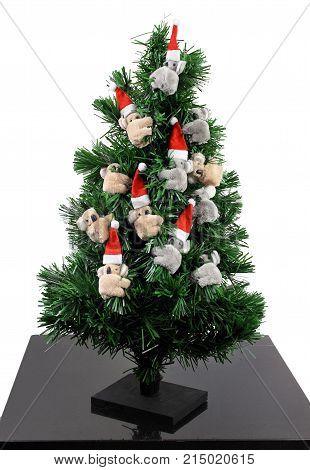 Christmas Tree with Koala Soft Toys on White Background