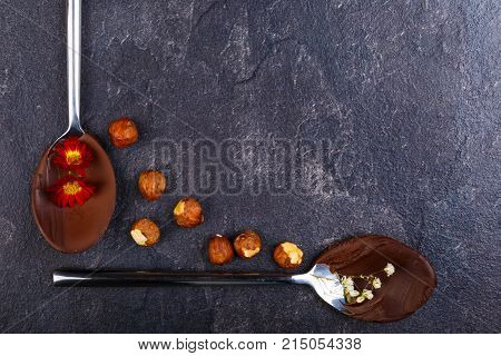 Melted and frozen chocolate on spoons with flowers and sticks, with hazelnut next to a stone background close-up. Spoons make a right angle