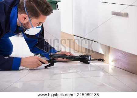 Close-up Of A Pest Control Worker With Torch Spraying Pesticide On Wooden Cabinet