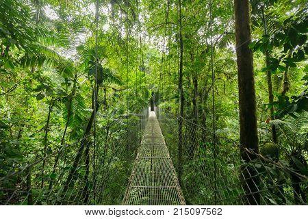 Hanging suspension bridge in Monteverde cloud forest reserve Costa Rica