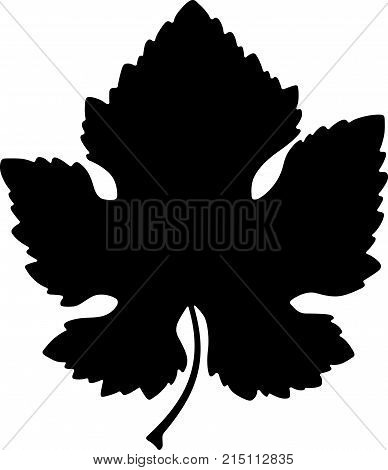 Vine leaf with a cutting, shade picture