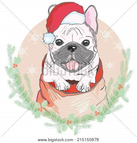 Portrait of cute french bulldog in red christmas hat on blue background. Vector illustration. Santa Claus. New Year's and Christmas. isolated, looking, merry, newyear, party, pet, portrait, print, puppy, red, santa, santaclaus, sketch, style, trendy vecto