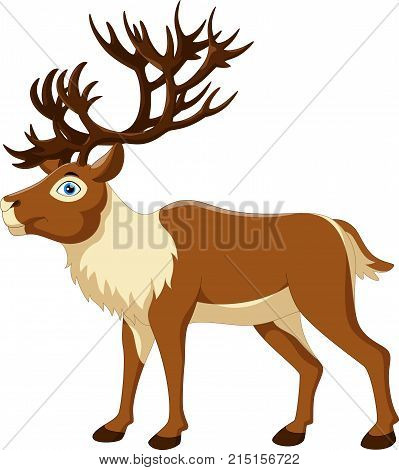 Vector illustration of cartoon reindeer isolated on white background