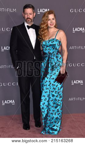 LOS ANGELES - NOV 04:  Amy Adams and Darren Le Gallo arrives for the 2017 LACMA Art + Film Gala on November 04, 2017 in Los Angeles, CA