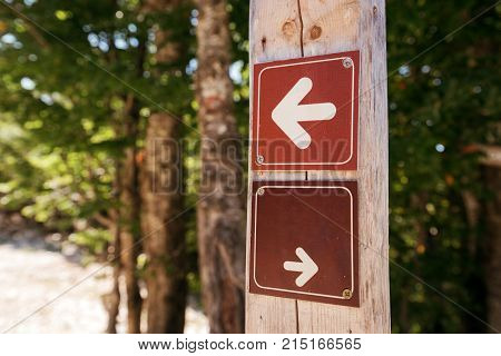 Forest hiking trail direction arrow signs as guide for people enjoying this outdoor sport activity