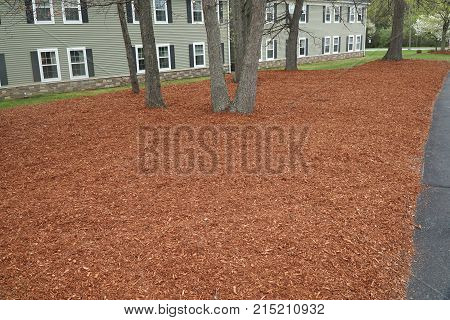 lawn with new mulch landscaped outside apartment building