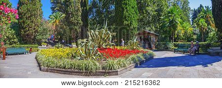 RUSSIA, SOCHI, AUGUST 30, 2015: Flowerbed with agave on the lawn Dendrarium, Sochi, Russia, August 30, 2015.
