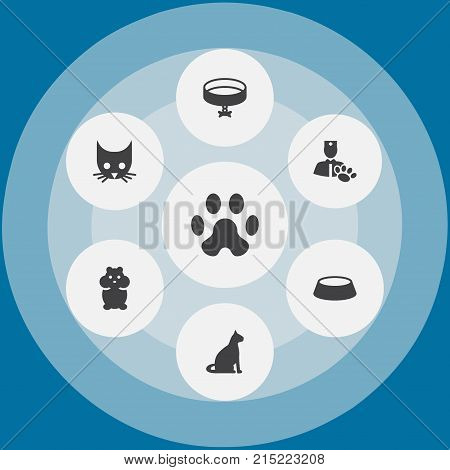 Collection Of Neckband , Veterinarian, Sitting Elements.  Set Of 7 Pets Icons Set.