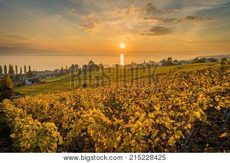 Sunset over geneva lake and vineyards in Lutry close to Lausanne with yellow autumn colors