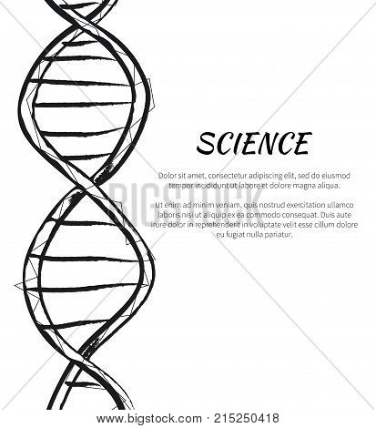 Science DNA code structure with chromosomes radiate light line sketch. Vector illustration of gene code icon isolated on white background