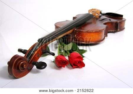 Violon And Rose