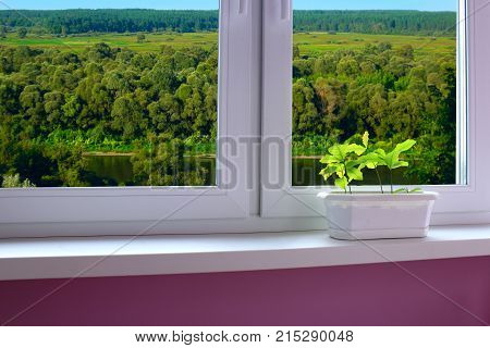 plants in the pot on the window-sill and view from the window to the landscape with river