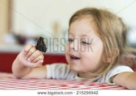 Little Girl Holds On The Hand The Aglais Io Butterfly And Watches For Him, Observation, Emotions