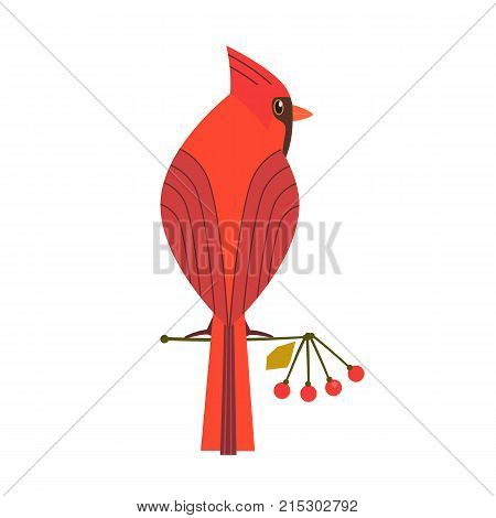 Cute Red Northern cardinal icon. Comic simple flat cartoon. Winter birds of backyard city garden wonderland. Stylized funny bird isolated. Template for logo vector scavenger hunt card background