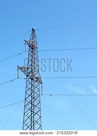 The electrical grid near field energy background