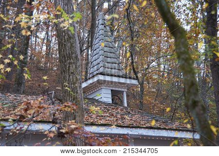 Old church steeple in the woods with leaves on roof