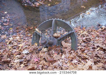 Old metal sprocket rusting in pile of leaves