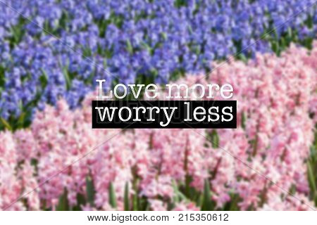 Inspirational Motivation Quote Hyacinths Field