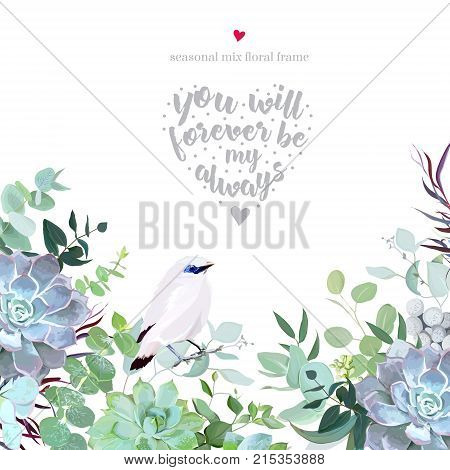 Botanical vector design card with white Bali starling bird. Eucalyptus selection, echeveria succulents, herbs, agonis, various plants and leaves. Natural frame. All elements are isolated and editable