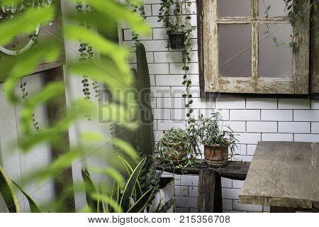 Green view indoor home garden stock photo