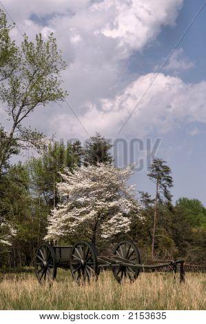 Civil War Caisson 3