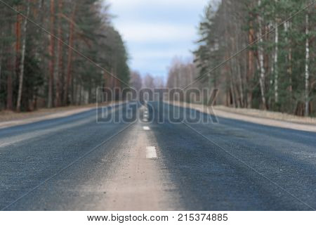 Horizontal shot of highway with its white dividing strip close up. The forest background in blur.