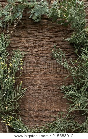 winter, background, eco friendly concept. there is a frame created with branches of different conifer trees that are placed on the background of very textured wooden surface