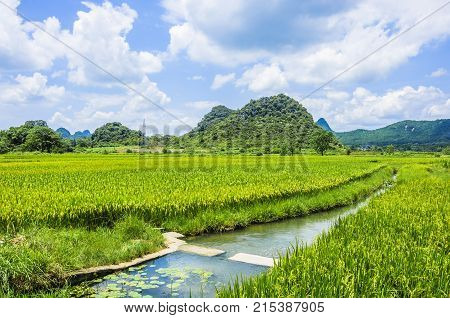 Beautiful karst mountains and rural scenery in summer, Guilin China.