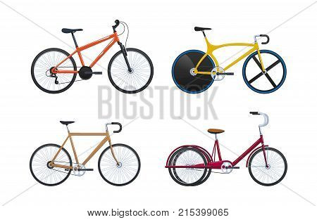 Set of modern summer vehicles for transportation, city bicycles: travel and walks, sports races, family bike, walking. Cycling, bike and bicycle. Vector illustration.