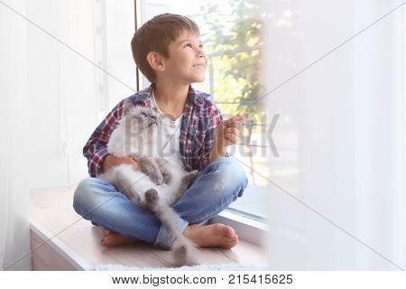 Cute little boy with fluffy cat sitting on windowsill